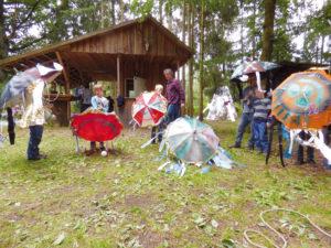 """Raumschiff """"strandete"""" im Fuhrberger Wald"""